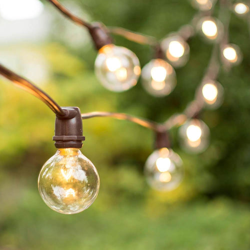 Commercial Globe String Lights, 25 Ft Brown Wire, 2 in Bulb, Clear