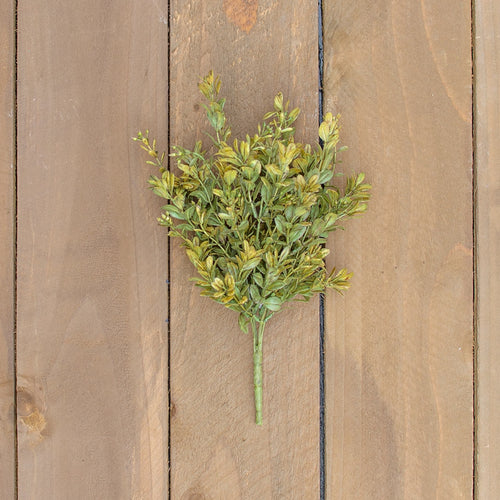 English Boxwood Sprig With Berries, Realistic Bush, 12 inch, Green