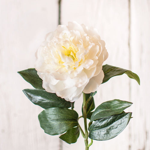 Peony, Artificial Flower, Faux Floral, 17 inch, White