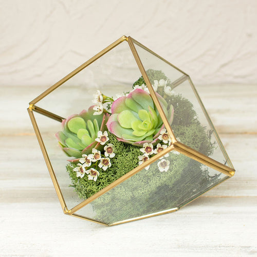 Terrarium Display Box, Industrial Geometric Cube, Clear, 7 in, Gold