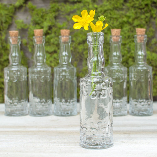 Vintage Apothecary Bottles, Embossed Glass Bud Vases, 5in, Clear, 6 Pk