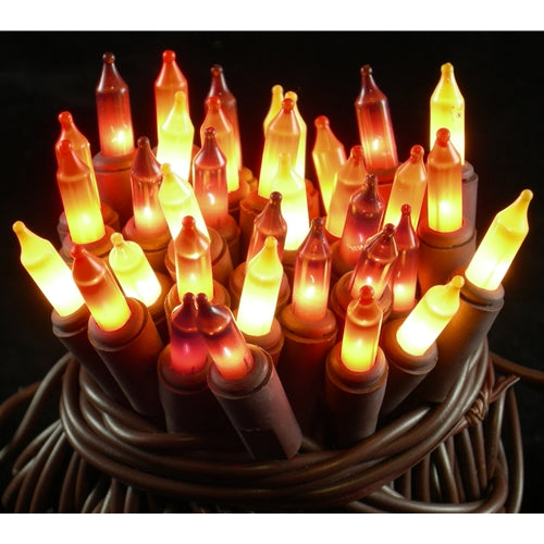 Fall Harvest String Lights, 35 Mini Lights, Fall Colors, Translucent