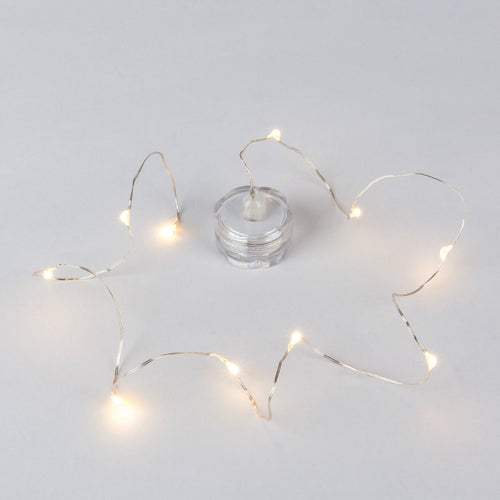 Floral Fairy Lights, Submersible LEDs & Battery Pack, Warm White, 2 PK