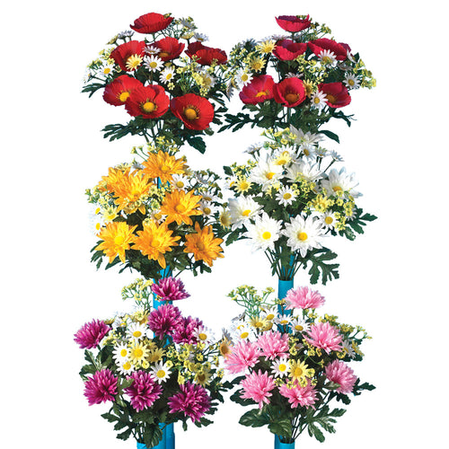 Assorted 16-Inch Tall Mixed Mum, Poppy and Aster Bushes (Set of 6)