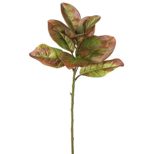 Autumn Magnolia Leaf Spray, Artificial Branch, 31 Inch, 3 Pack