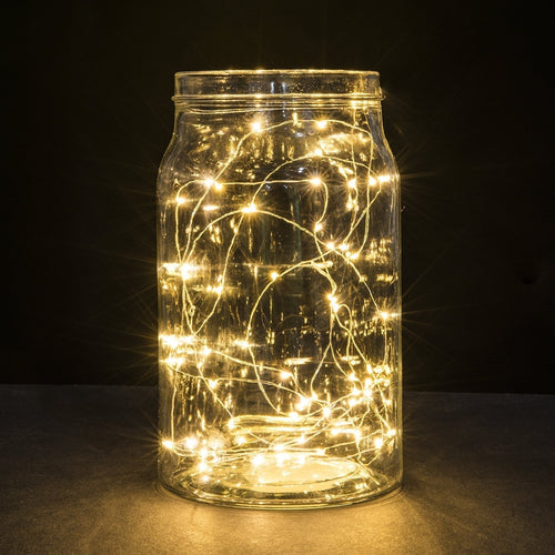 LED Fairy Lights, 6.5 Foot Silver Wire, 20 LEDs, Warm White