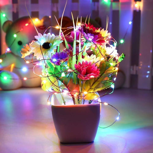 LED Fairy Lights, 6.5 Foot Silver Wire, 20 LEDs, Blinking Multicolor