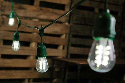 Commercial LED Edison Drop String Lights, 48 Foot Green Wire, Cool White