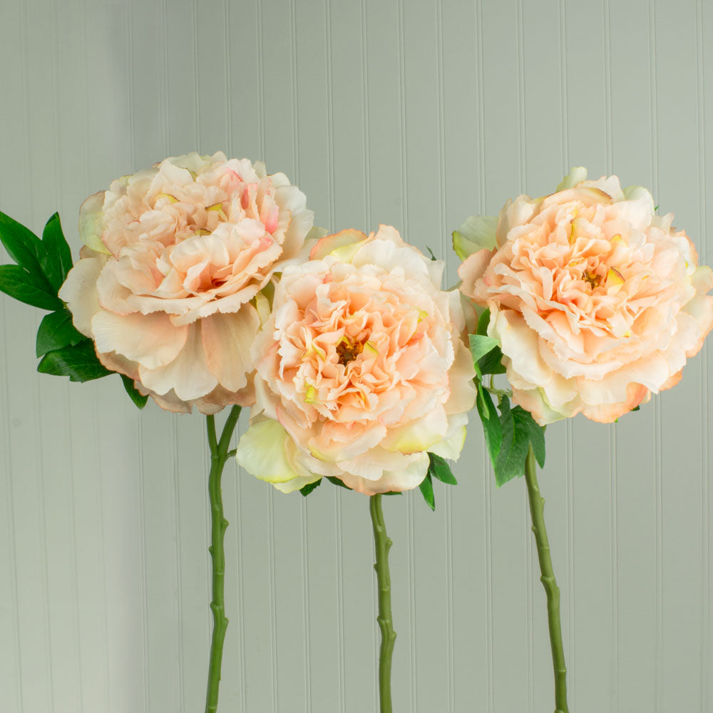 Faux Peony Bloom, Artificial Flower, Bendable, 24 in, Coral Pink