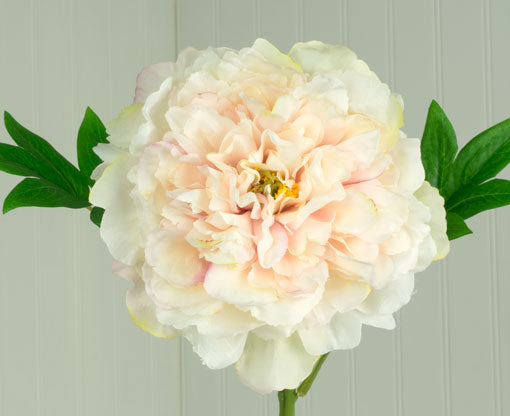 Faux Peony Bloom, Artificial Flower, Bendable, 24 in, Blush Pink