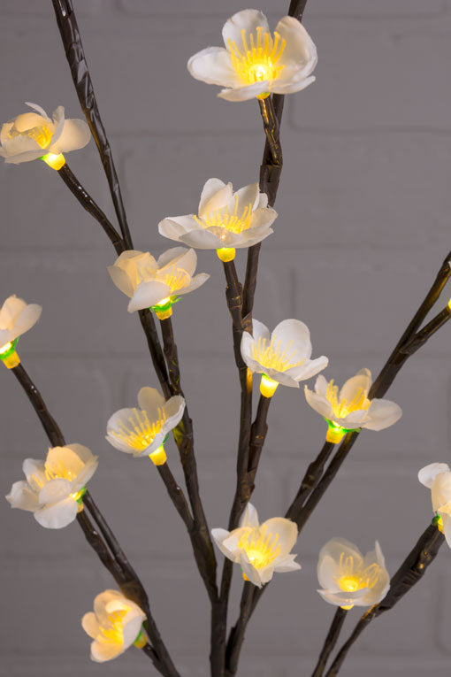 Lighted Plum Blossom Branches