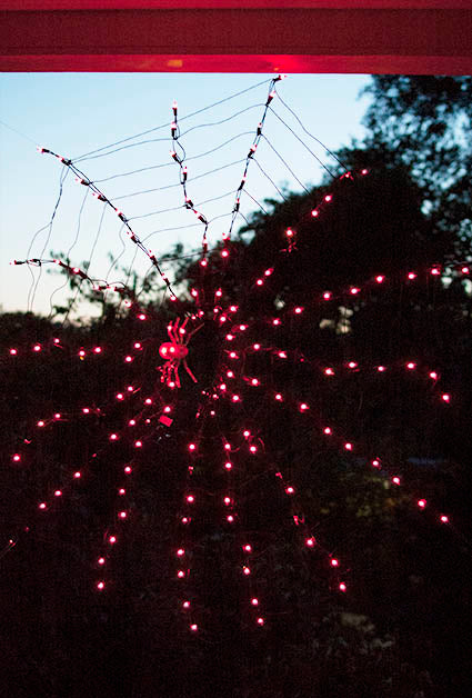 Novelty Lights Spider Web