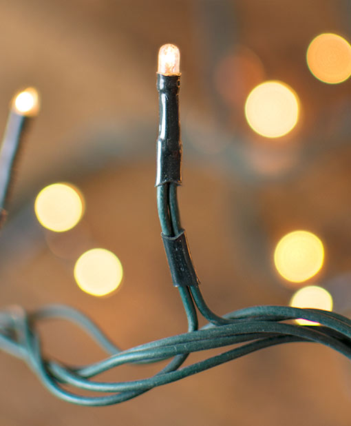 String Lights, 26 ft, Plug in, Multi-function, Green Wire, Warm White