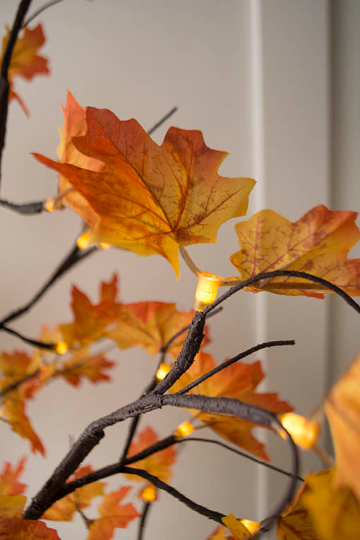 Sprigs of variegated fall leaves attach to each wide angle warm white LED bulb on our 4 foot lighted maple tree, casting an autumnal glow over the tree and your decor.