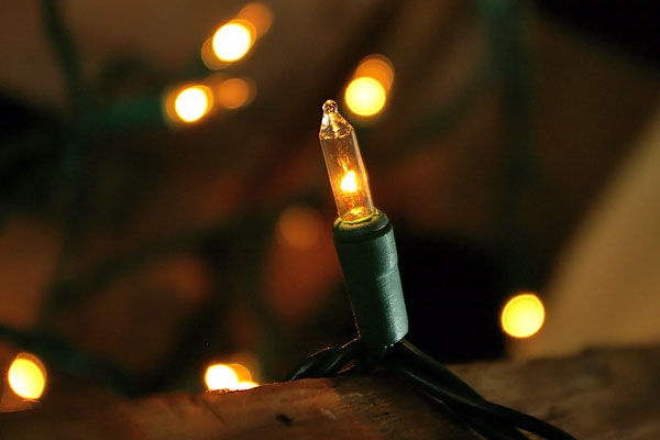 String lights, 100 Traditional Mini Bulbs, 42 ft. Green Wire, CLEAR