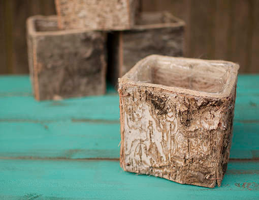 Set of 12 5.75 inch wide square birch planters