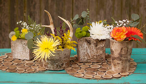 Set of Birch Bark Planters