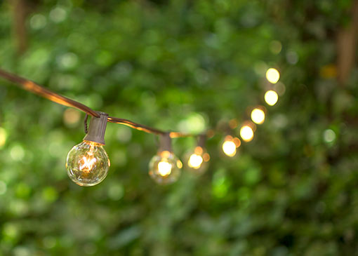 Globe String Lights, 1.5 Inch E12 Bulbs, 50 Foot Brown Wire C7 Strand, Clear