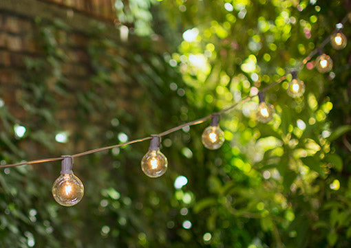 Globe String Lights, 2 Inch Bulbs, 50 Foot Brown Wire C7 Strand, Clear