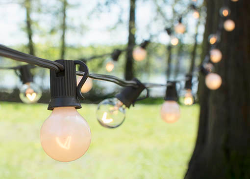 Duet Globe String Lights, 50 Ft C7 Brown Wire, G30 Bulb, Pearl & Clear