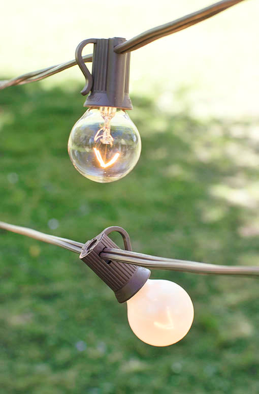 Globe Lights, 1.25-inch Bicolor Bulb Duet, Brown Wire, 50 foot length