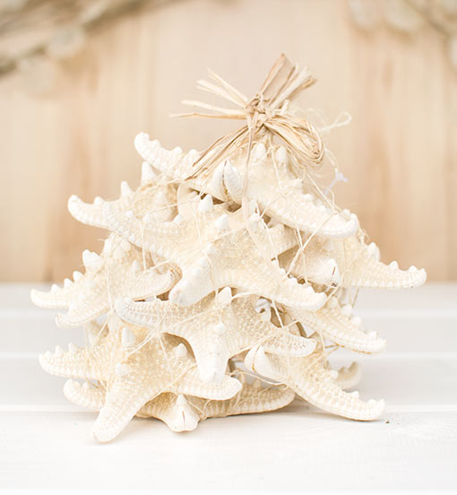 This set includes 12 cream colored sea stars that vary in diameter from 3 inches to 4.5 inches.
