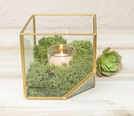 Fill this display box with green moss and a votive candle for your wedding centerpieces.