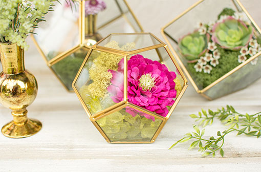 Fill this terrarium with green vase filler, moss and a zinnia flower for your restaurant centerpieces.