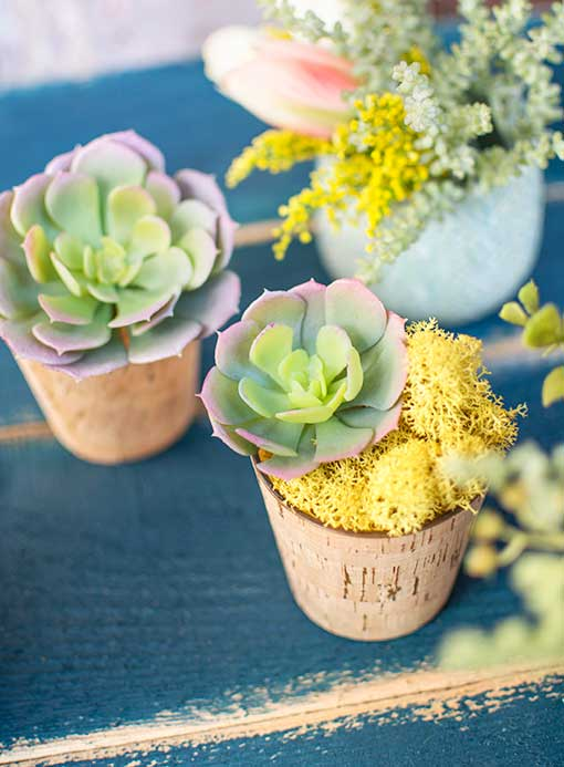 Fill these tiny bud vases with moss and succulents for gifts and favors at your wedding.
