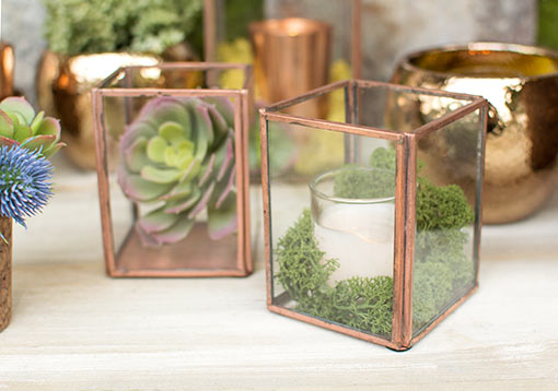 Enchant your restaurant or wedding with an industrial garden scene. Fill one terrarium with a candle surrounded by moss and the other with a succulent. Add hammered planter pots and floral bouquets to finish the eye-catching display.