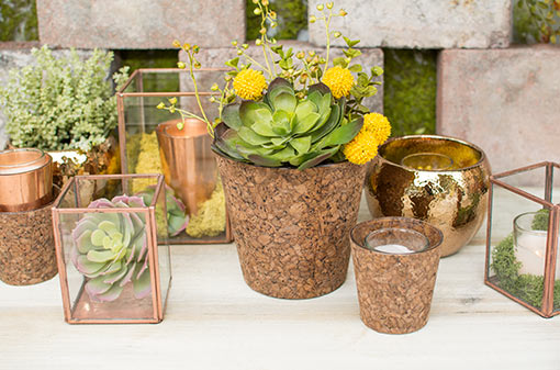 Create a grand industrial garden display with our display boxes and cork vases holding vibrant sprigs, succulents and filler flowers. Complete the look with hammered planter pots and votive candles.