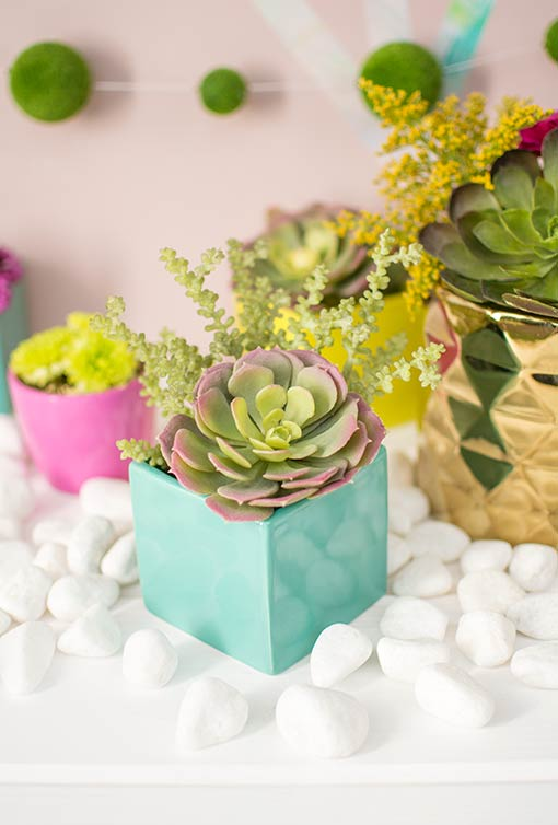 Fill each vase with succulents and sprigs for a fresh addition to each table.