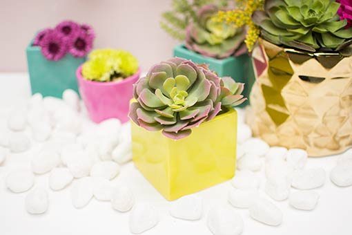 Create a colorful landscape of minimalist design with our neon green planters alongside teal blue vases, pink candle holders and gold colored geometric accents. Finish the look with succulents and white river rock table scatter.