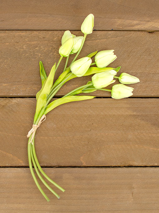 Each bouquet comes with 3 stems, each stem consisting of 3 tulip buds.