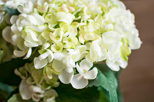 These long lasting flowers will stay forever green to easily keep for year round in your bistro decor or reuse in your event planning needs.