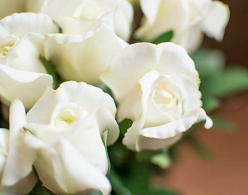 """These """"real feel"""" flowers are long lasting high quality sets made to emulate actual roses."""