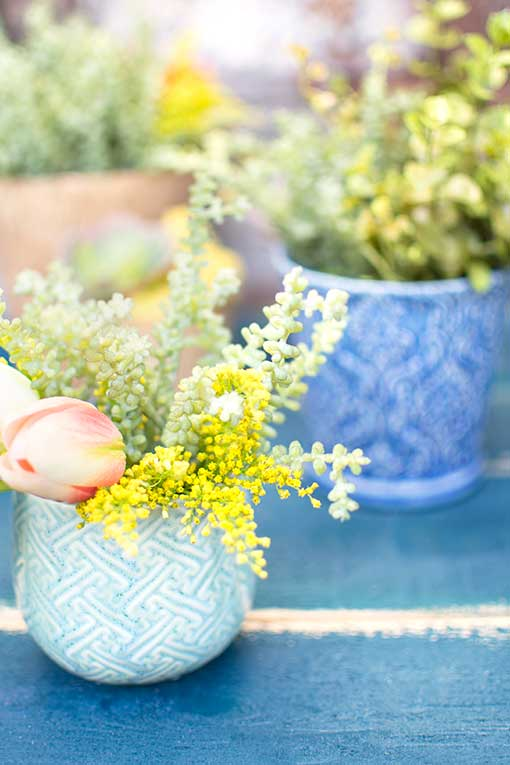 Pair this sprig with our blue designed pot for a exotic spring design.