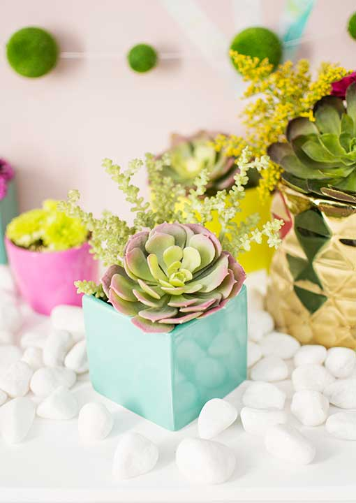 Delight your geometric design of square vases and gold holders with a fresh display of decorative succulents.