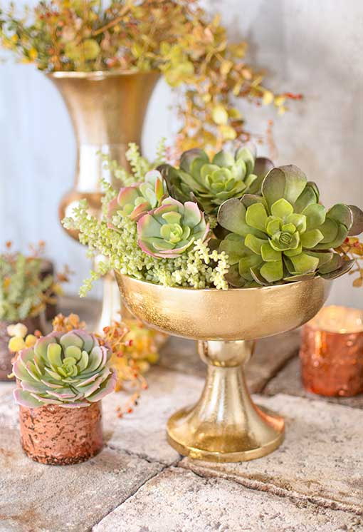 Fill mercury glass accents and gold toned compotes with our collection of succulents.
