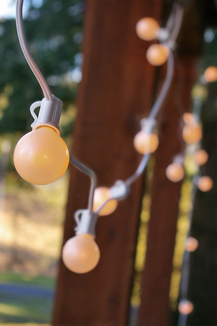 The C7 wire illuminates 75 pearl white globe bulbs which are 1.5 inches in diameter individually and encapsulated in E12 sockets.