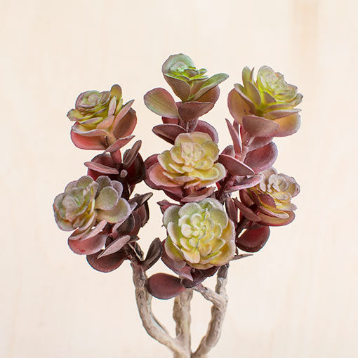 Succulent Spray, Faux Stem, Artificial FLower, 8 inch, Red & Green