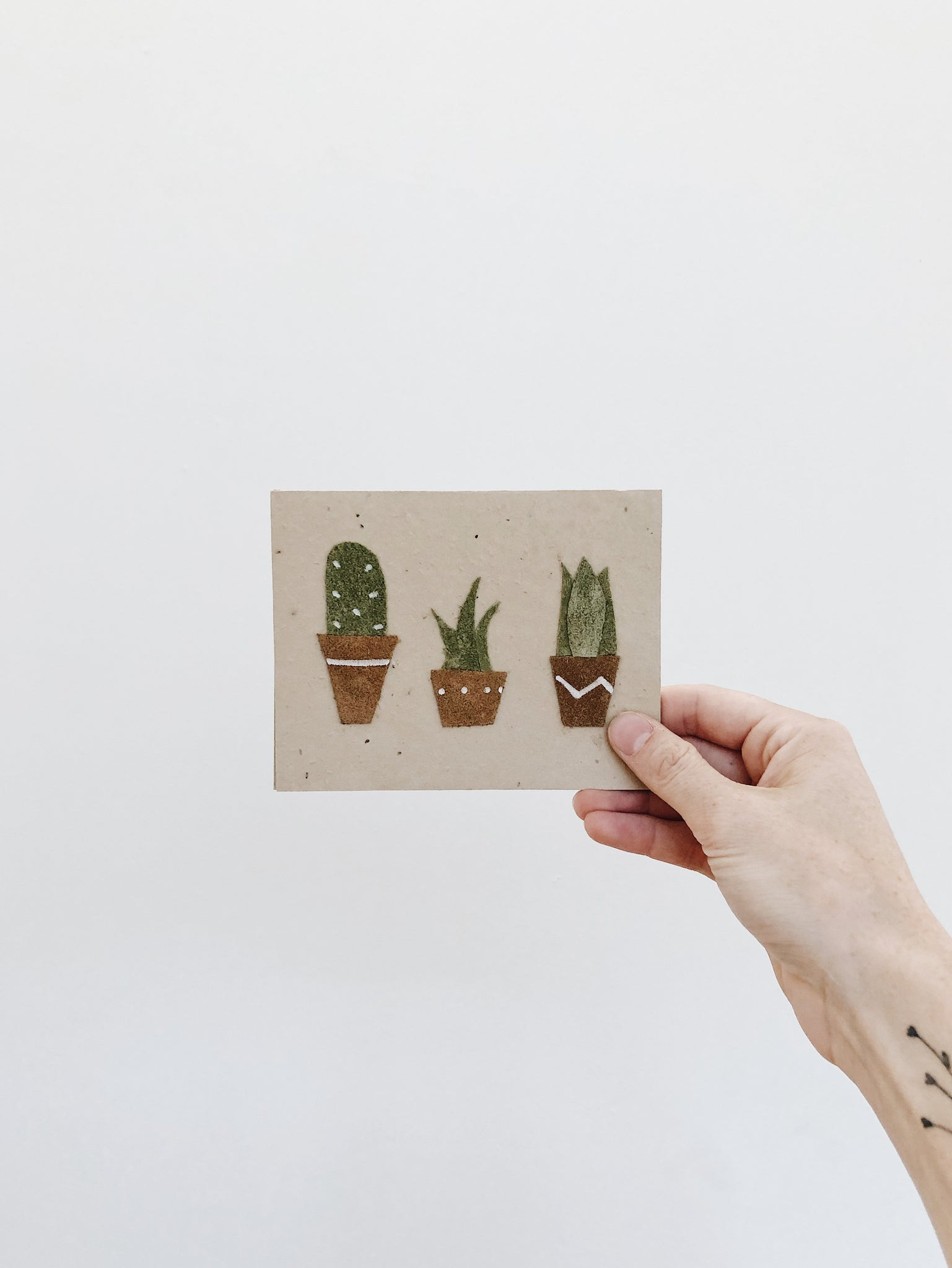 'Succulents' - Handmade Seed Cards