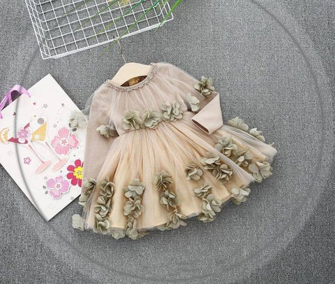 Beautiful Applique Frock - Ambitionmart