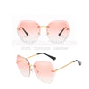 CircleColour Sunglasses II B02249