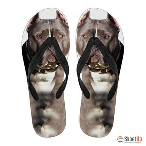 Pitbull Flip Flops For Women- Free Shipping - Deruj.com
