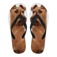 Irish Terrier Flip Flops For Men-Free Shipping - Deruj.com