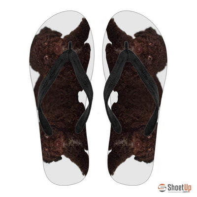 Spanish Water Dog Print Flip Flops For Men-Free Shipping - Deruj.com