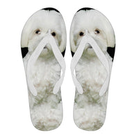 Maltese Flip Flops For Men-Free Shipping Limited Edition - Deruj.com