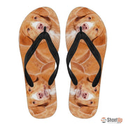 Nova Scotia Duck Tolling Retriever -Flip Flops For Men-Free Shipping - Deruj.com