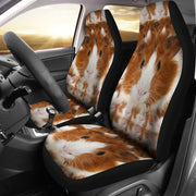 Abyssinian guinea pig Print Car Seat Covers-Free Shipping - Deruj.com